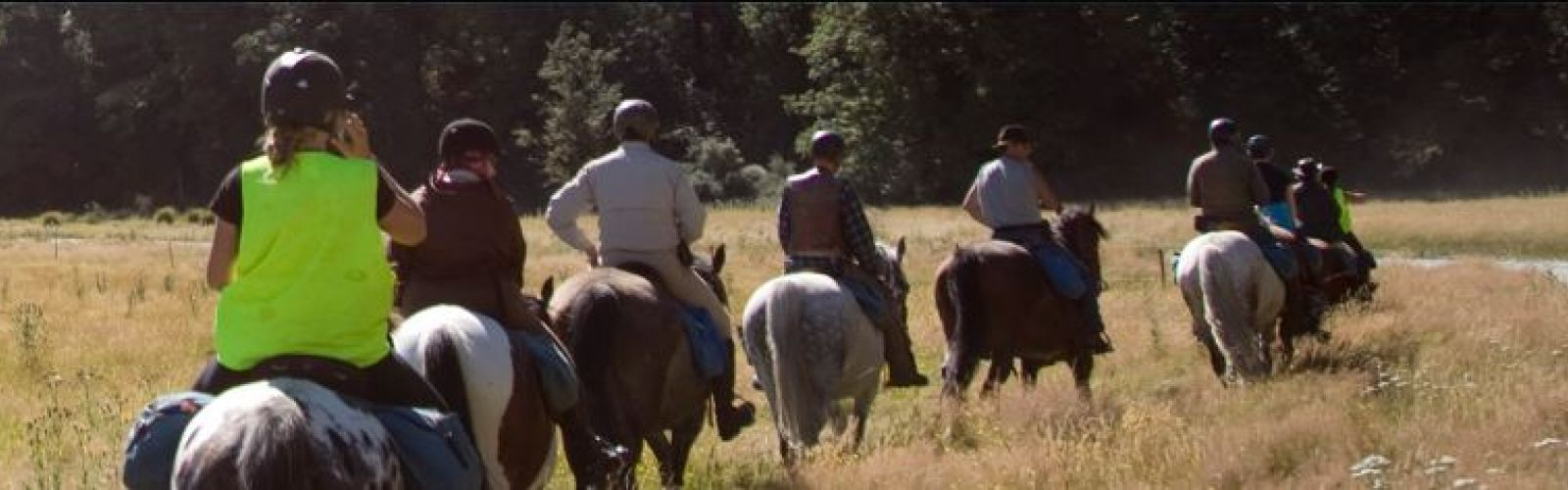 group of people riding horses through field