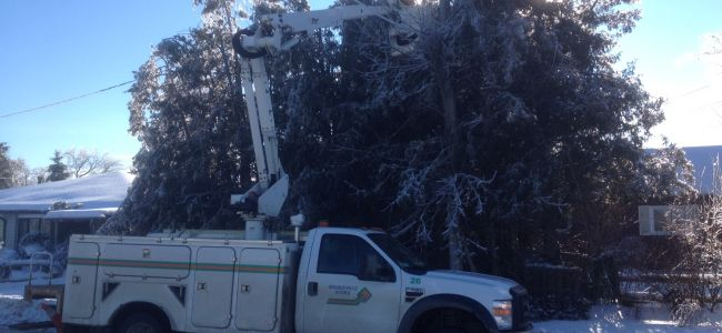hydro truck cutting trees